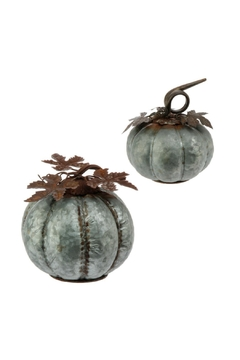 Shoptiques Product: Gray Pumpkins
