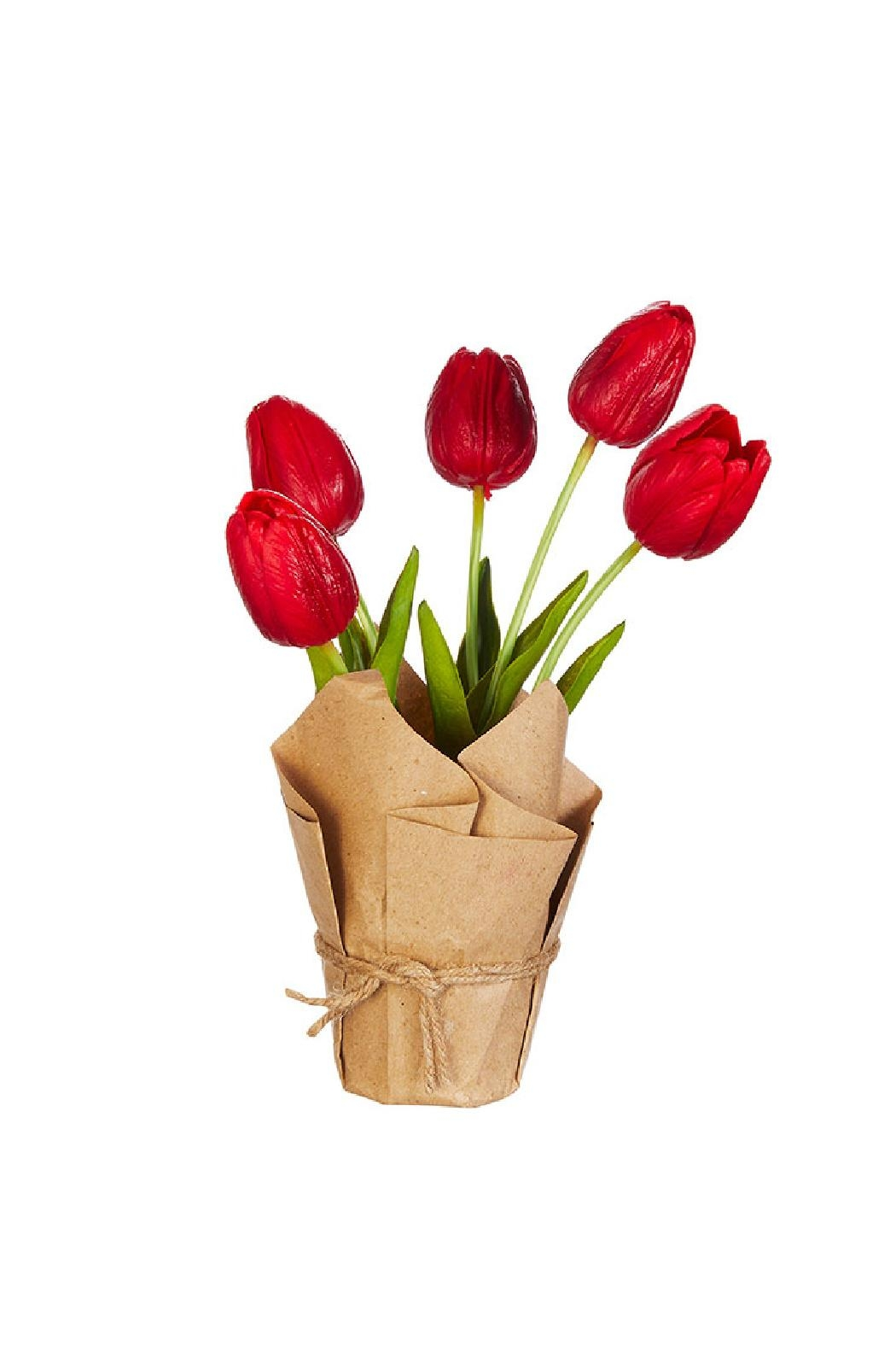 RAZ Imports Real Touch Potted Tulips - Main Image