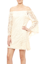 Reckless-Angel Lace Dress - Product Mini Image