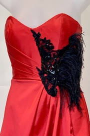 JUAN CARLOS PINERA RED & BLACK FEATHER GOWN - Front full body