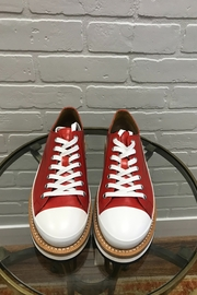 Cappelletti Red Oxford - Front cropped