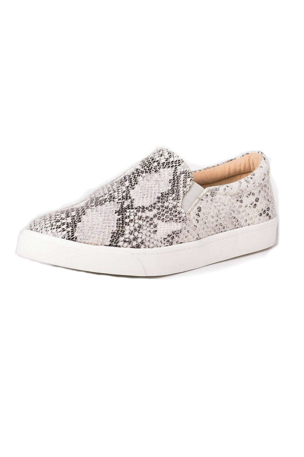 a353081935d Soda Reign Snakeskin Sneaker from Statesboro by Sole — Shoptiques