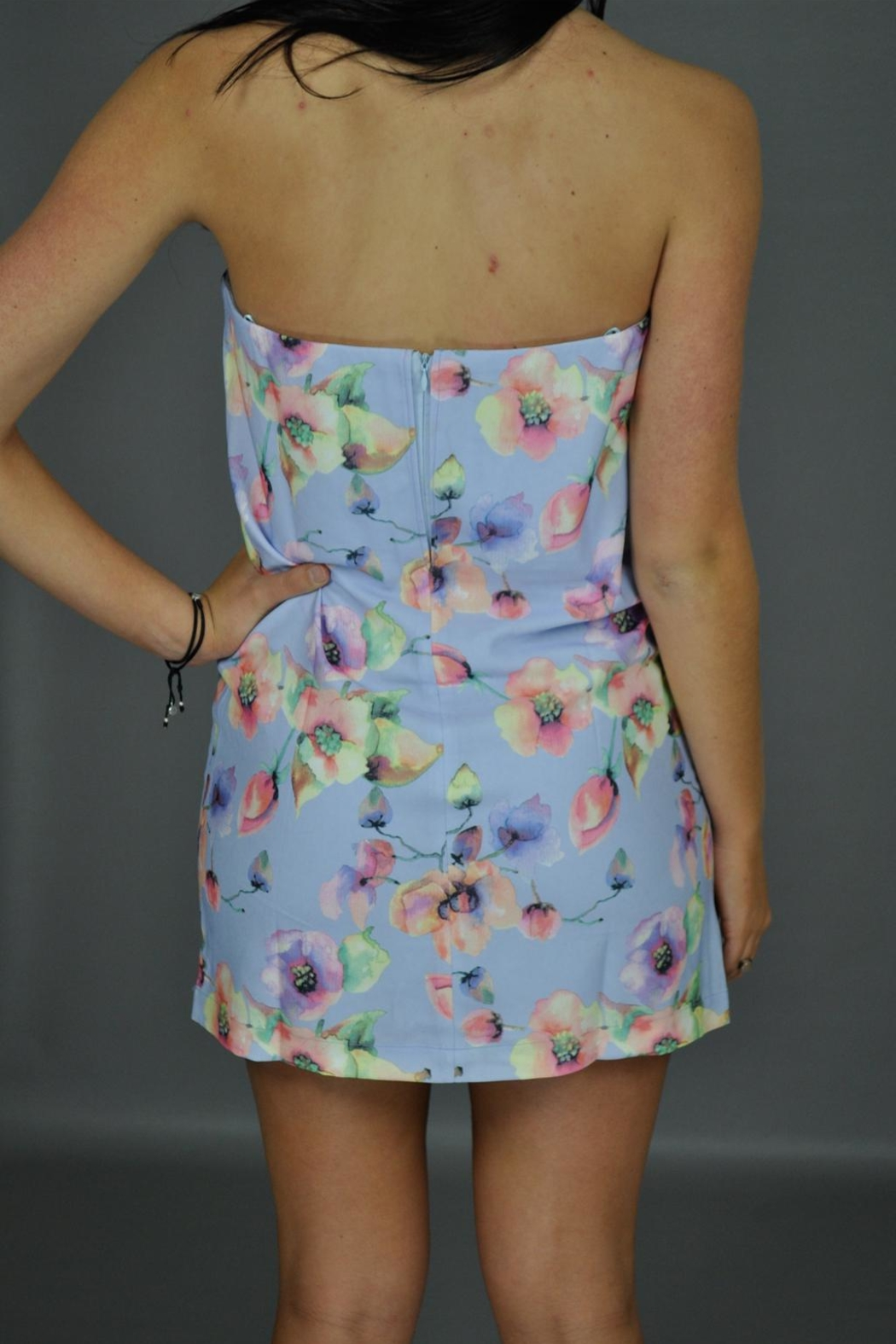 Renamed Clothing Spring Dreamin' Dress - Back Cropped Image