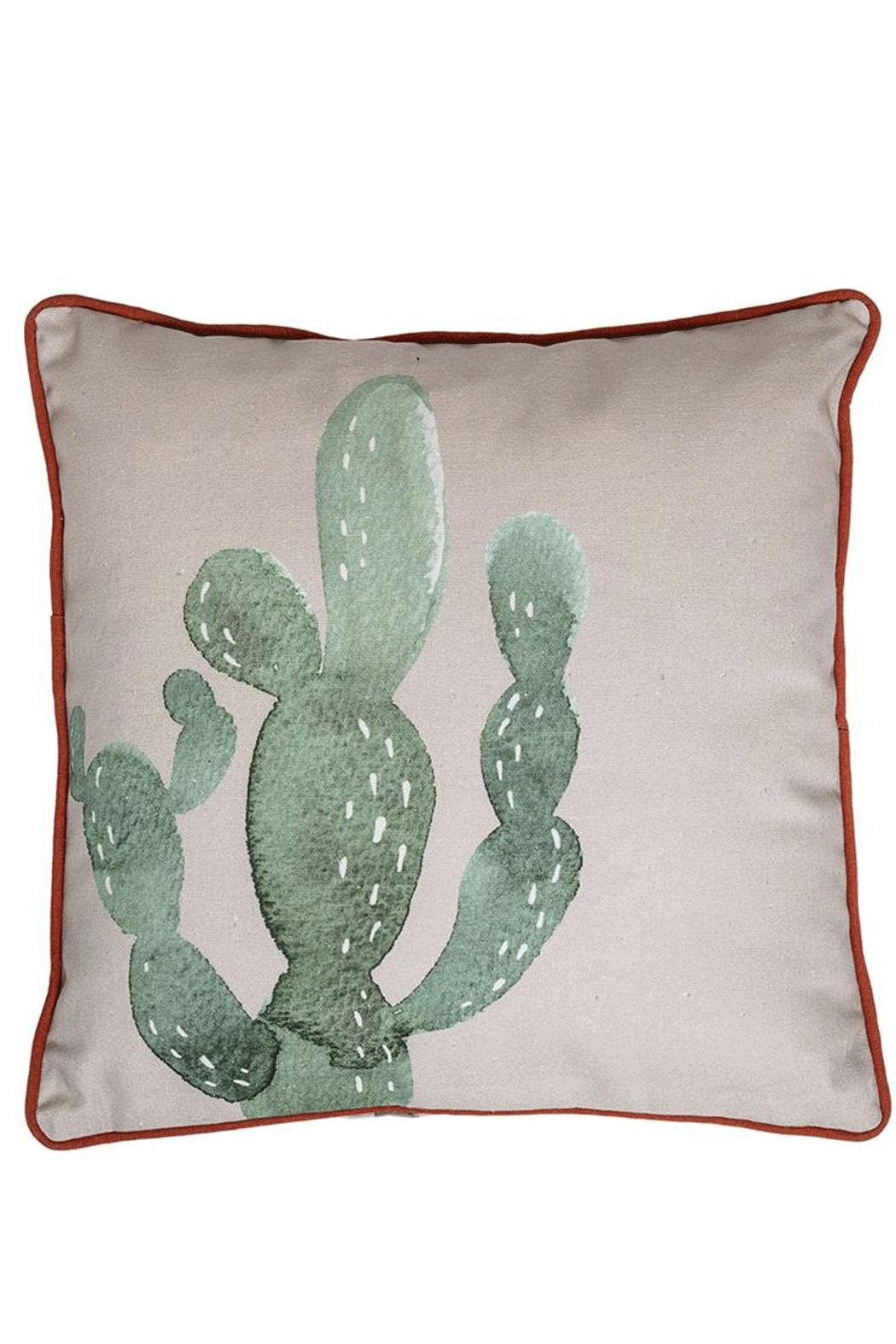 RENDR Cactus Pillow - Front Cropped Image