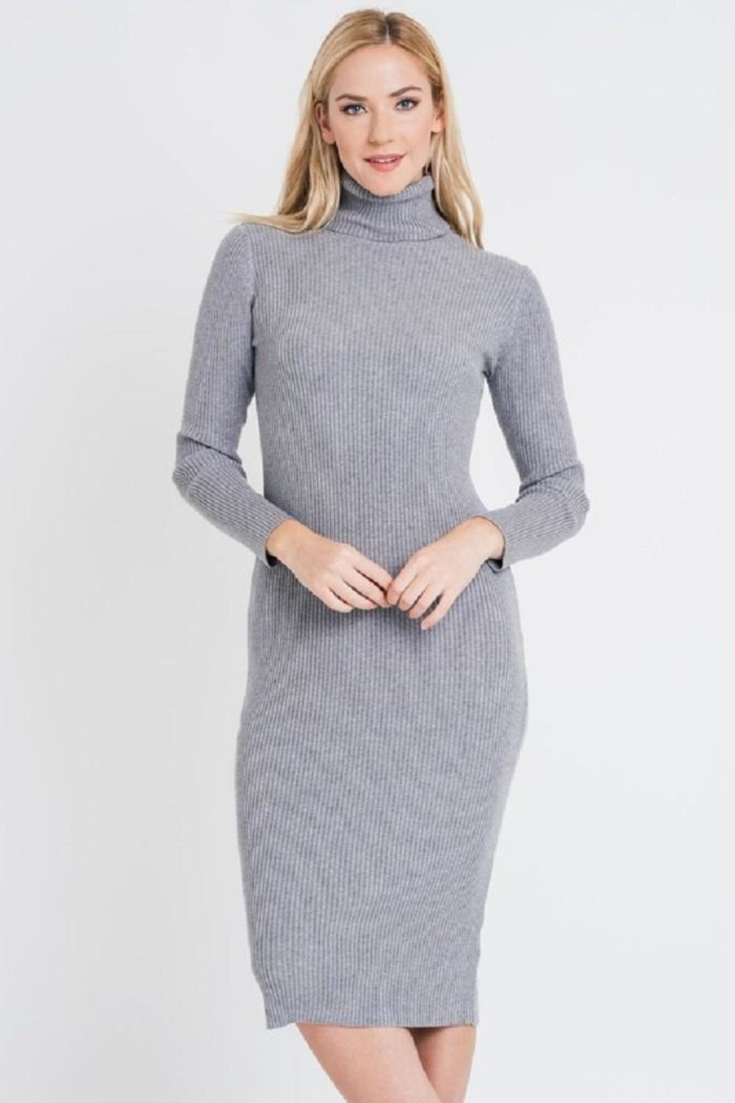 Renee C Turtleneck Sweater Dress - Main Image