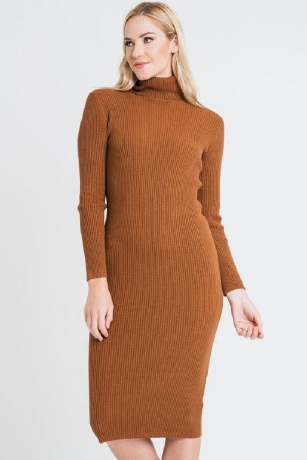 Renee C Turtleneck Sweater Dress - Front Cropped Image