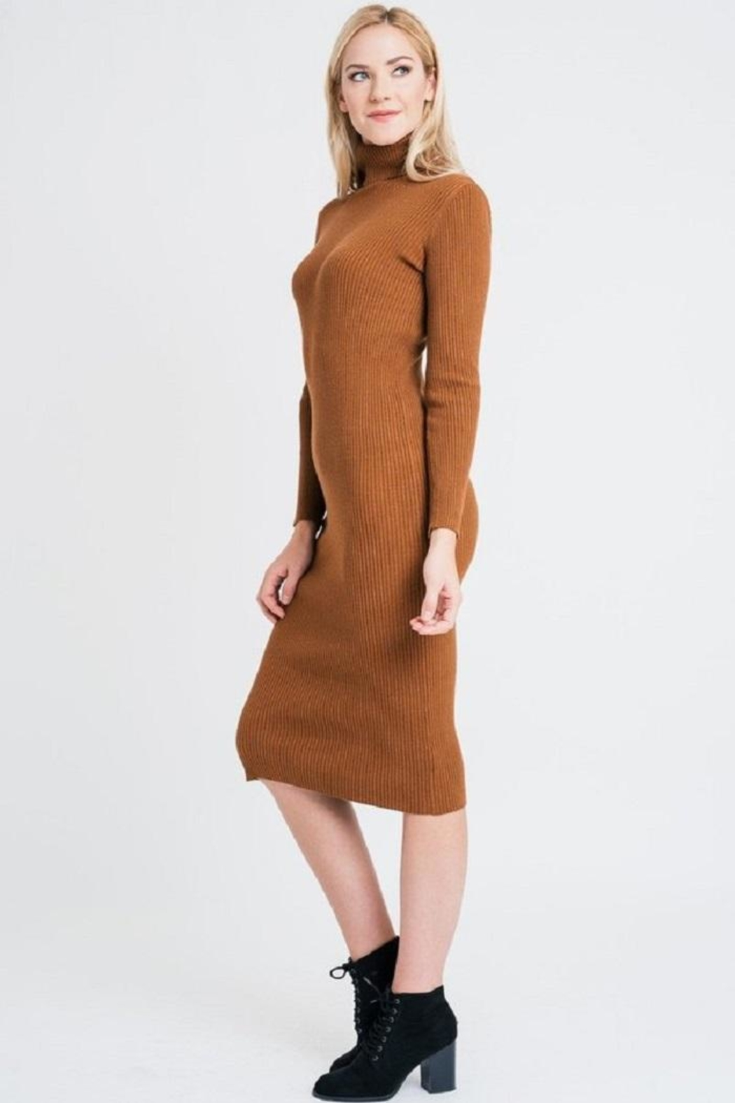 Renee C Turtleneck Sweater Dress - Back Cropped Image