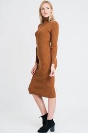 Renee C Turtleneck Sweater Dress - Back cropped
