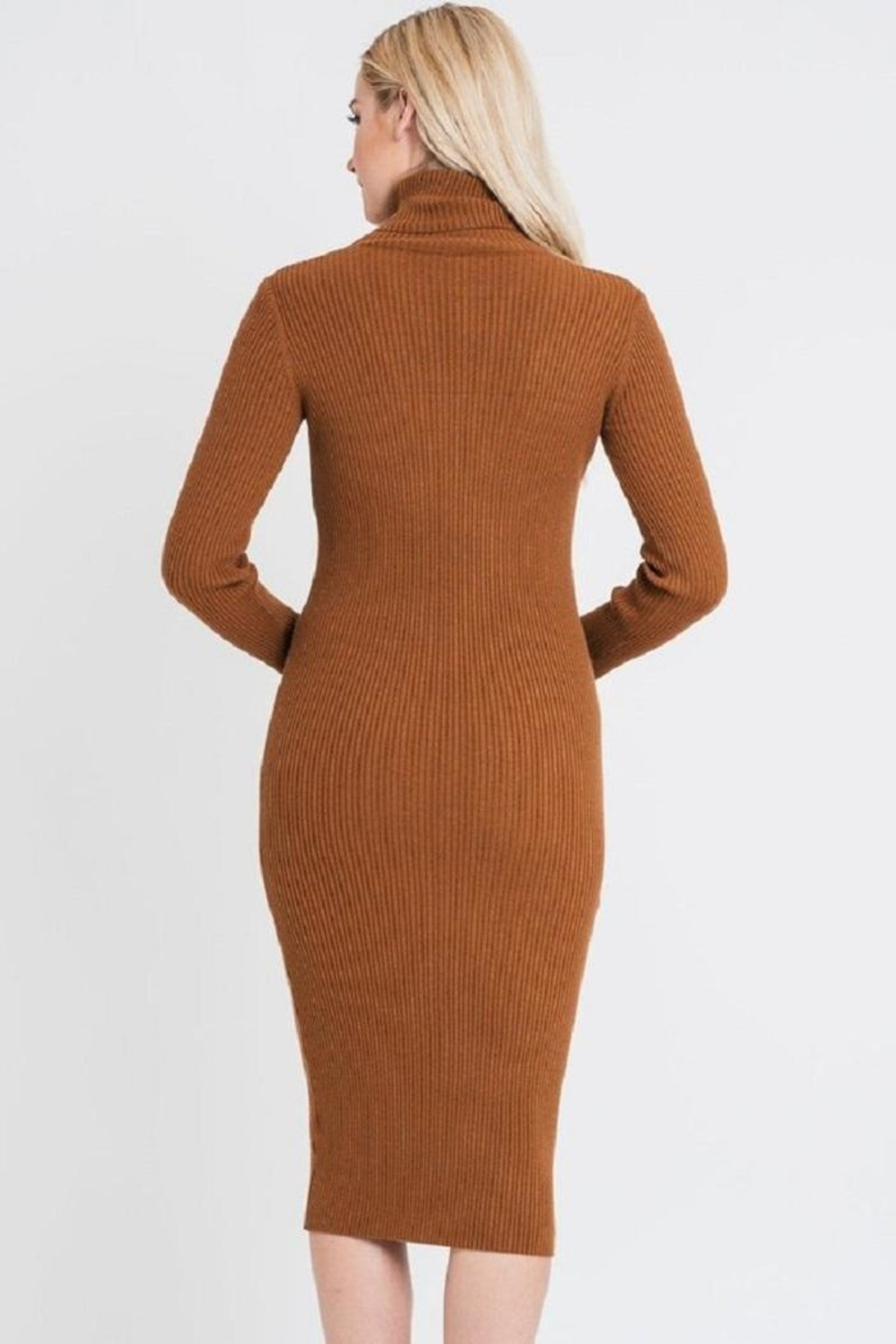 Renee C Turtleneck Sweater Dress - Side Cropped Image