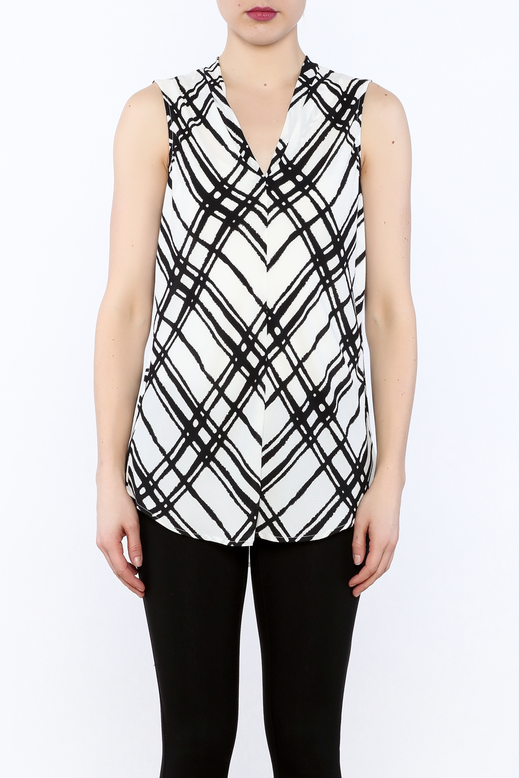 Renuar Sleeveless Pullover Blouse - Side Cropped Image