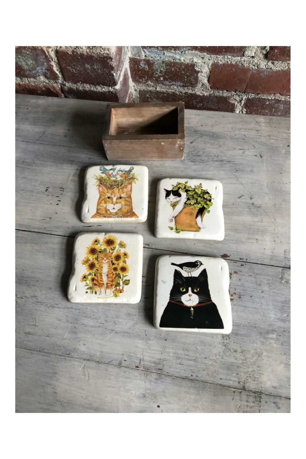 Creative Co-Op Resin Cat Coasters - Main Image