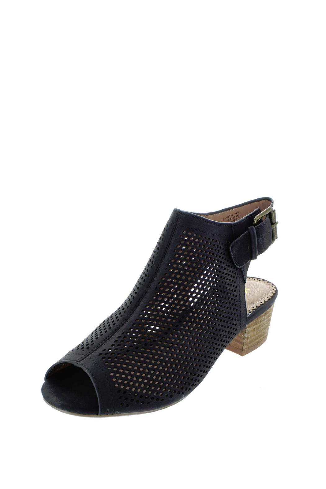 Restricted Haze Bootie From New York By Head Over Heelz