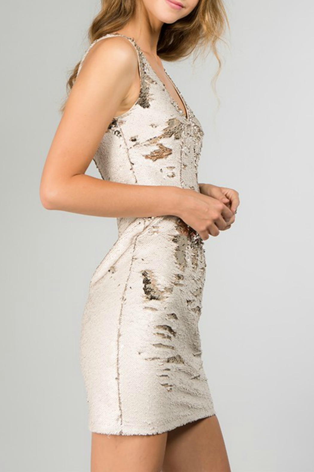 Minuet Reversible Sequin Dress - Side Cropped Image