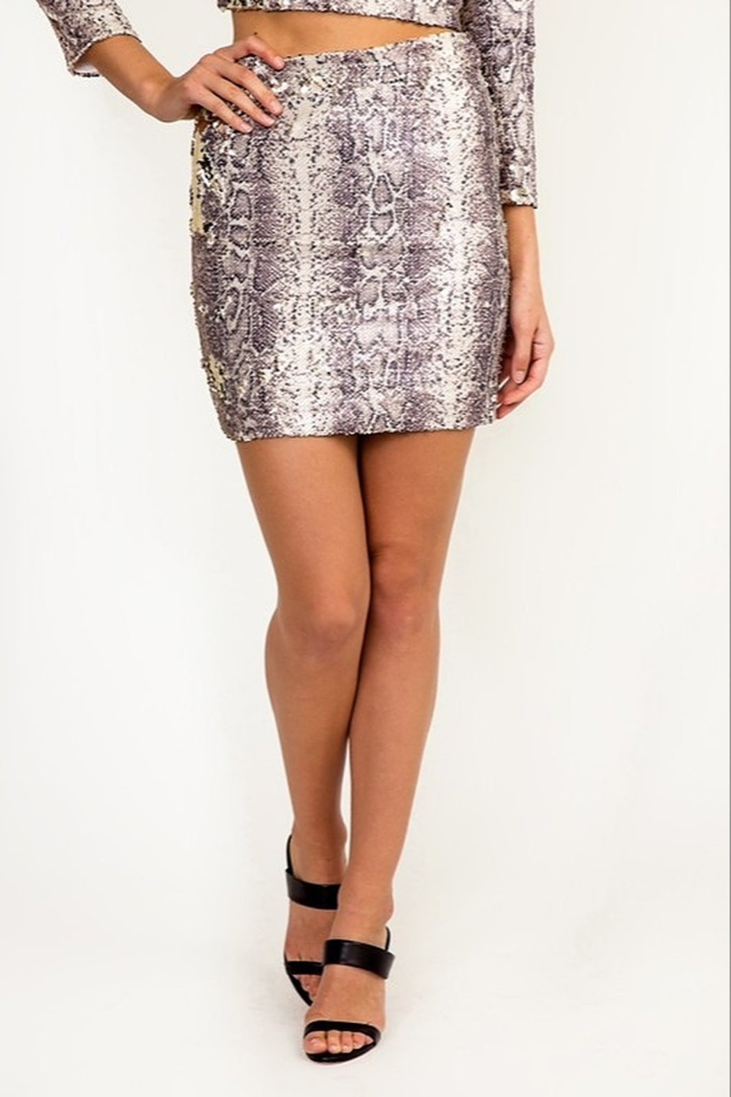 Olivaceous Reversible Sequin Skirt - Main Image