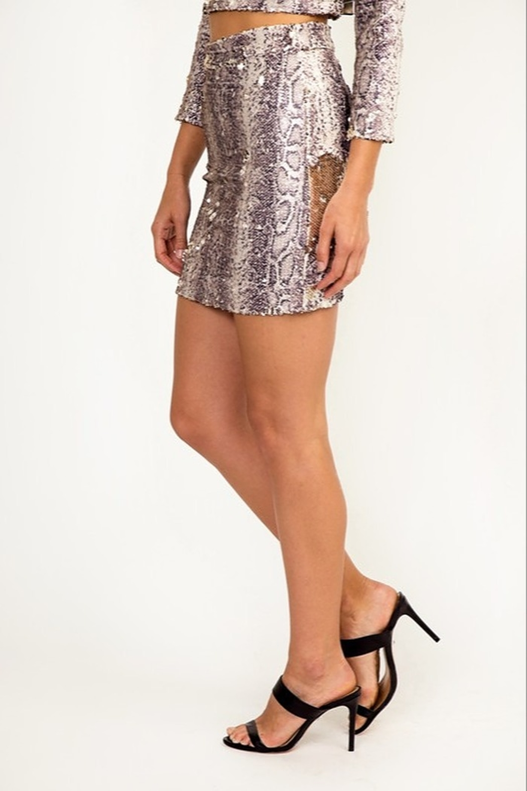 Olivaceous Reversible Sequin Skirt - Front Full Image