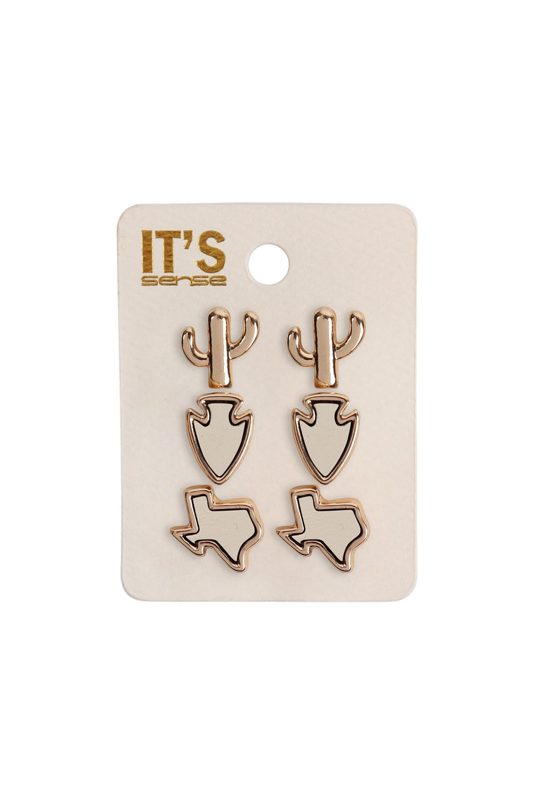 Riah Fashion 3-Set-Texas Map-Cactus-Stud-Post-Earring - Front Cropped Image