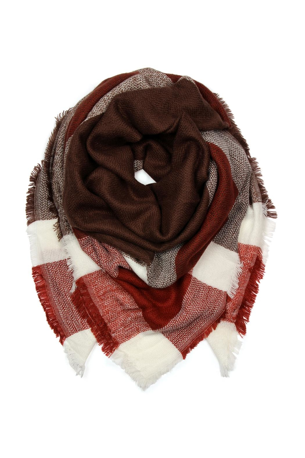Riah Fashion Blanket Fringed Scarf - Front Cropped Image