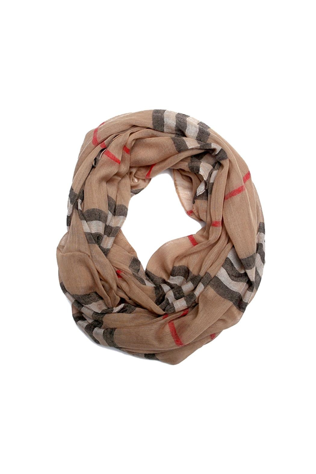 Riah Fashion Aileen Infinity Scarf - Front Cropped Image