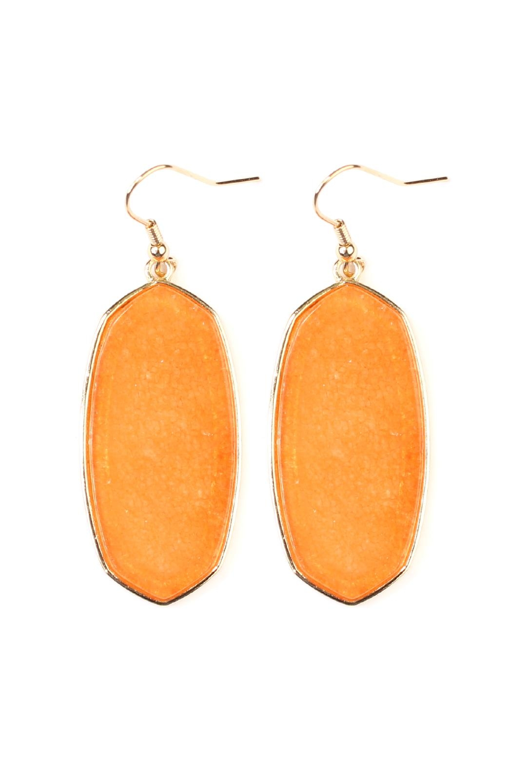 Riah Fashion Natural Stone Hook-Earrings - Front Cropped Image