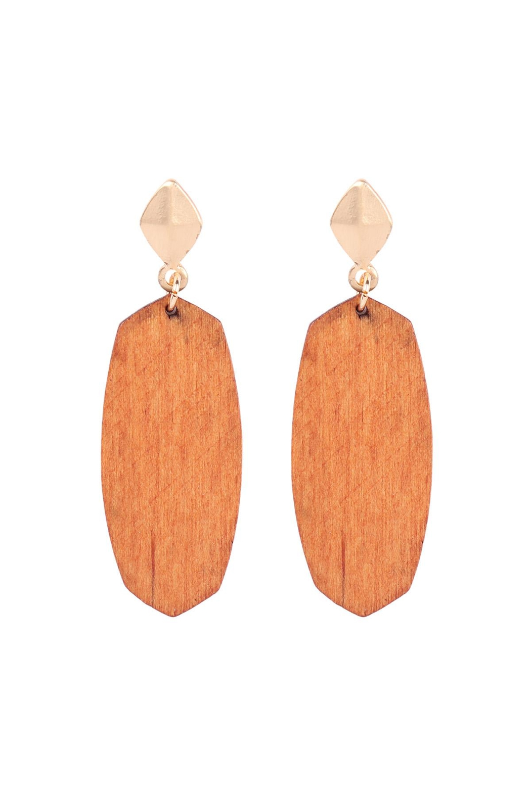 Riah Fashion Oval-Shaped-Wood-Post-Earrings - Front Cropped Image