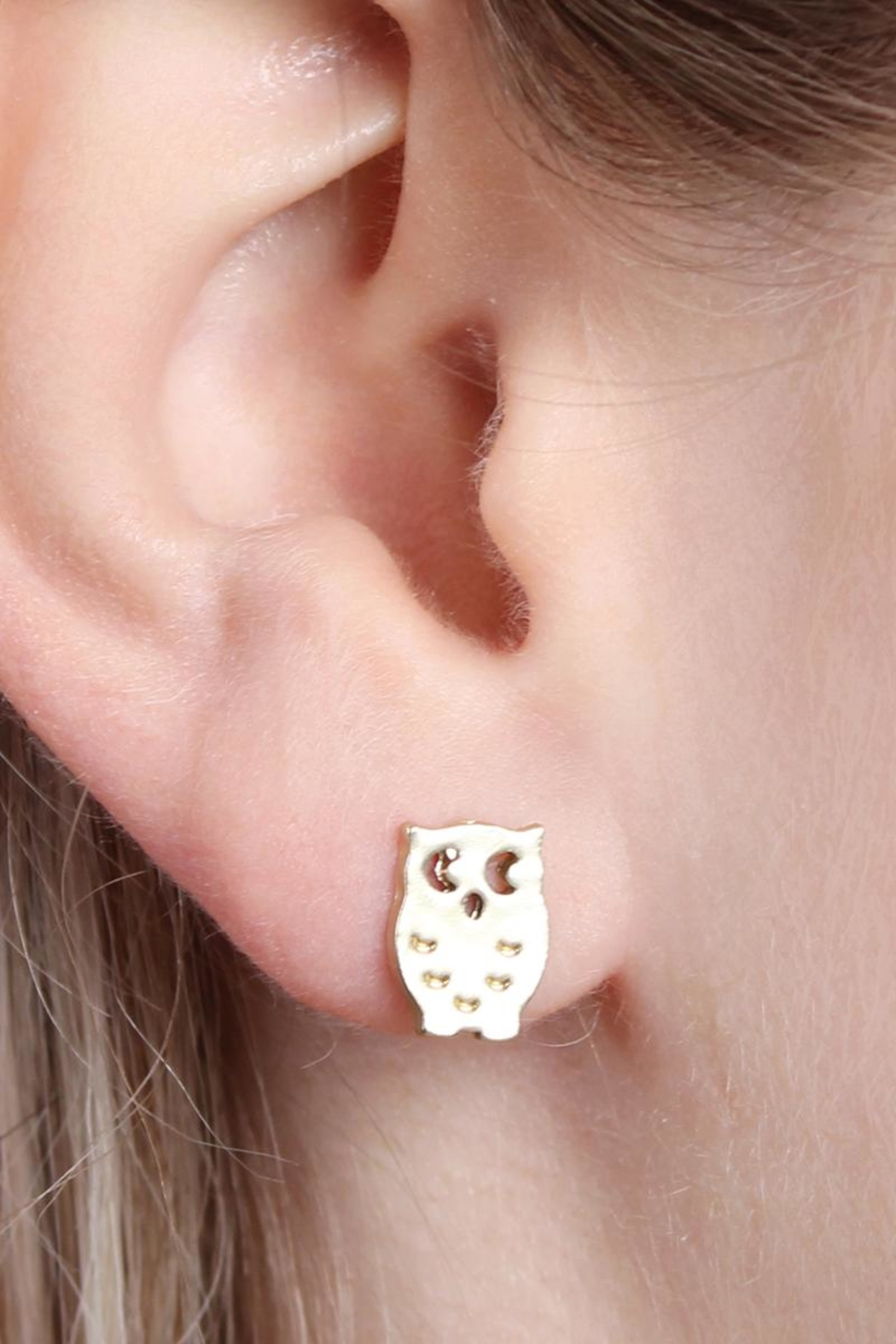 Riah Fashion Owl-&-Cactus 3-Pair Earring-Set - Front Full Image