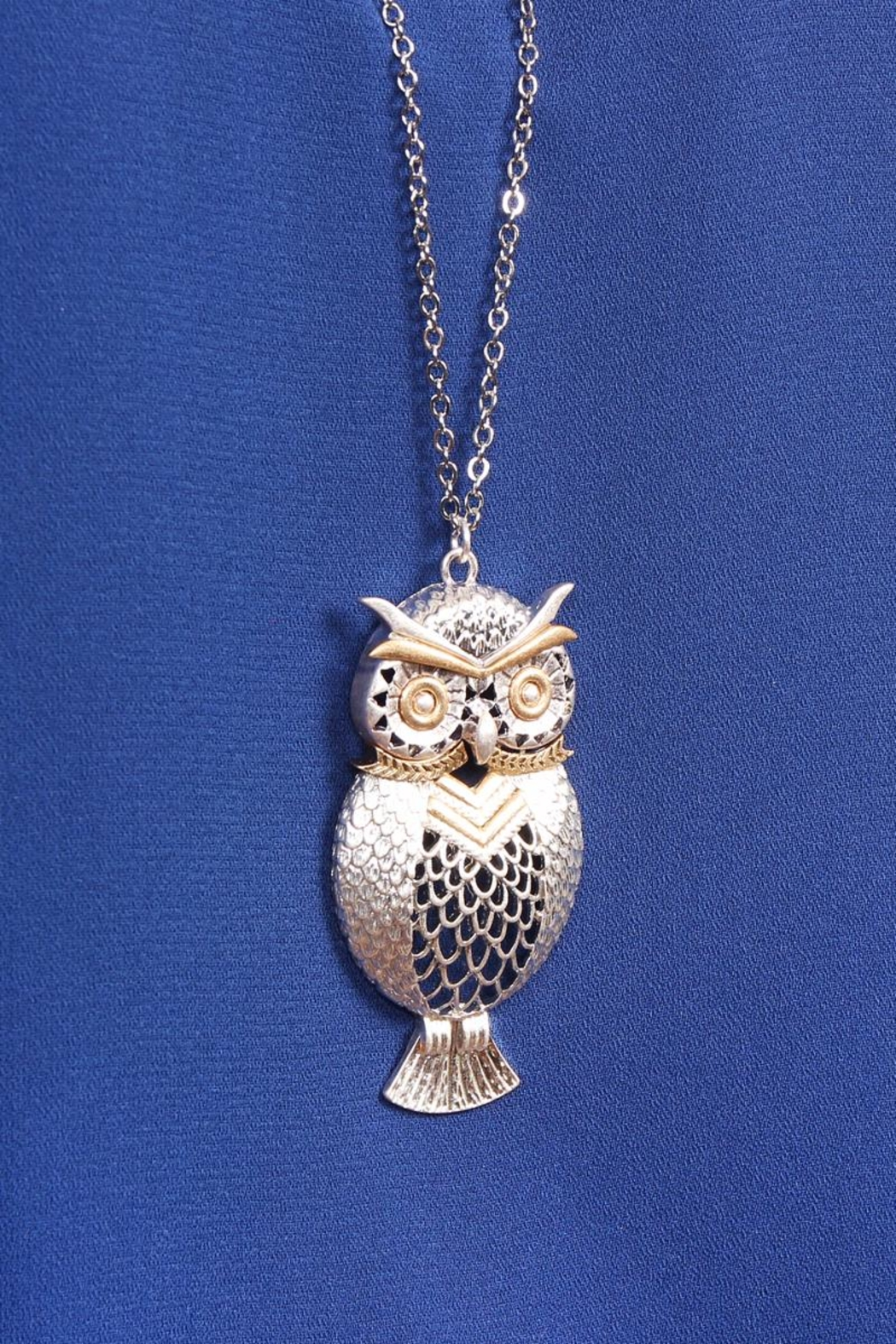 Riah Fashion Owl Two-Tone Necklace - Back Cropped Image