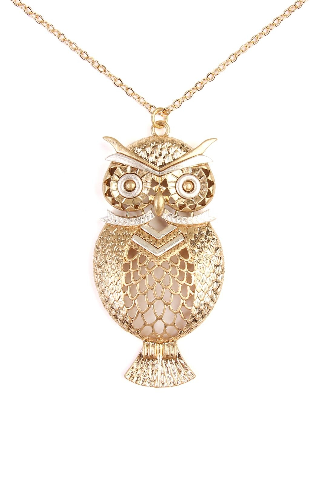 Riah Fashion Owl Two Tone Necklace - Front Full Image