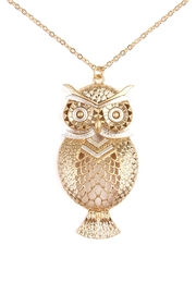 Riah Fashion Owl Two Tone Necklace - Front full body