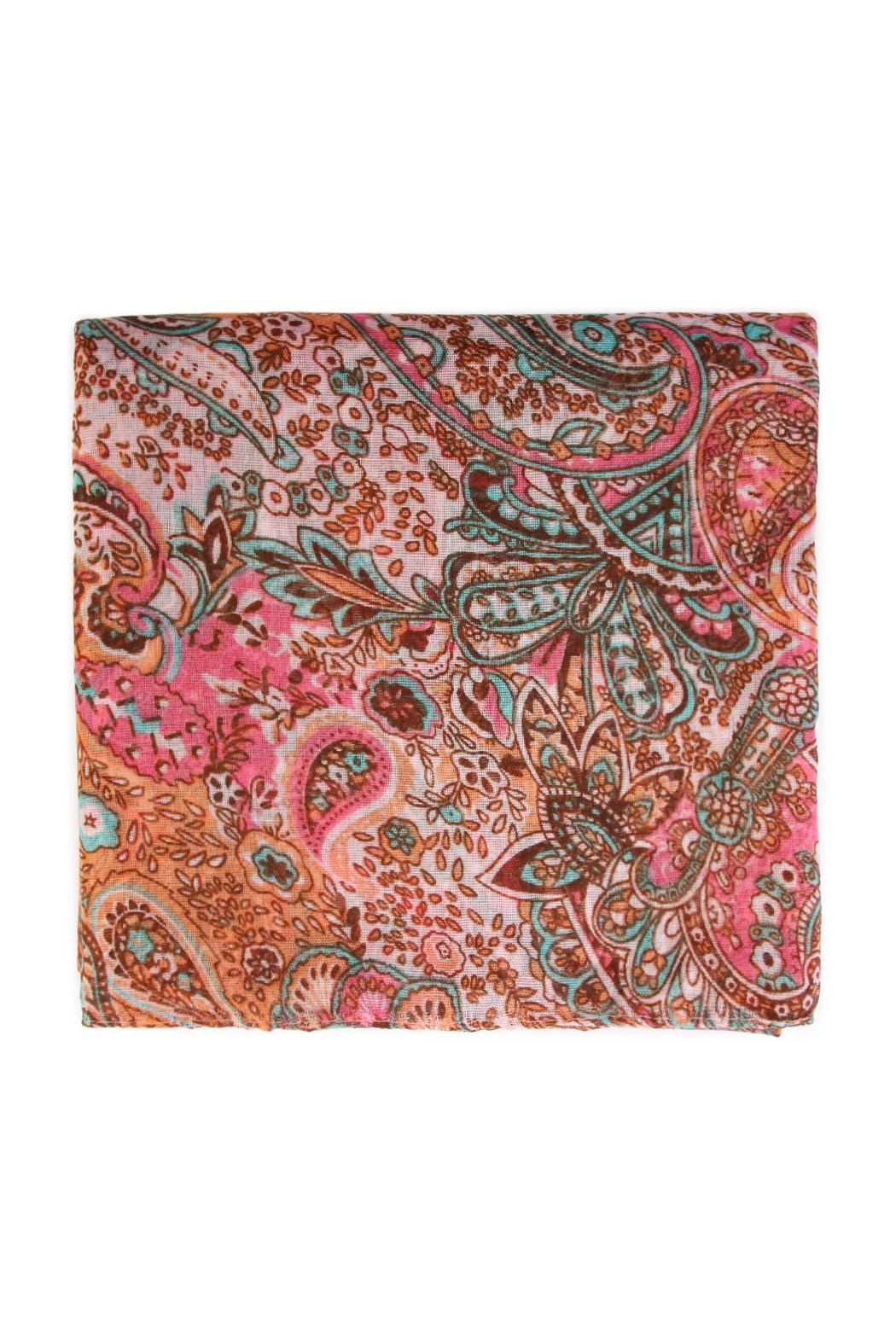Riah Fashion Paisley Printed Oblong Scarf - Front Full Image