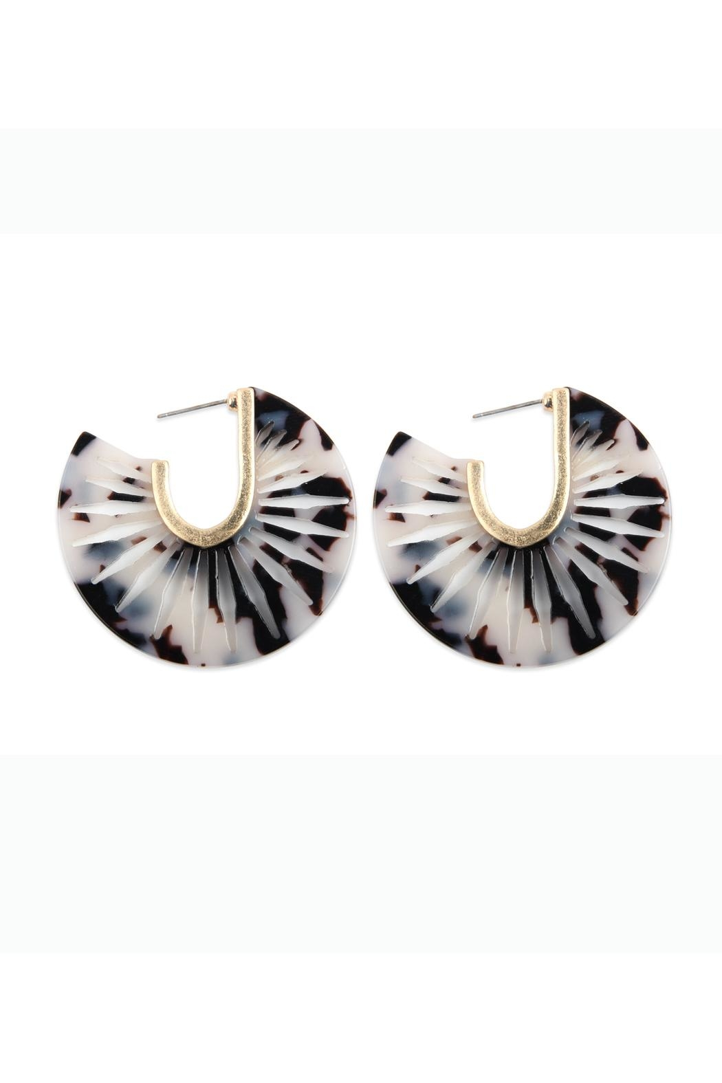 Riah Fashion Resin Post Hoop Earrings - Front Cropped Image