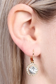 Riah Fashion Round-Lever Back Crystal-Earrings - Front full body
