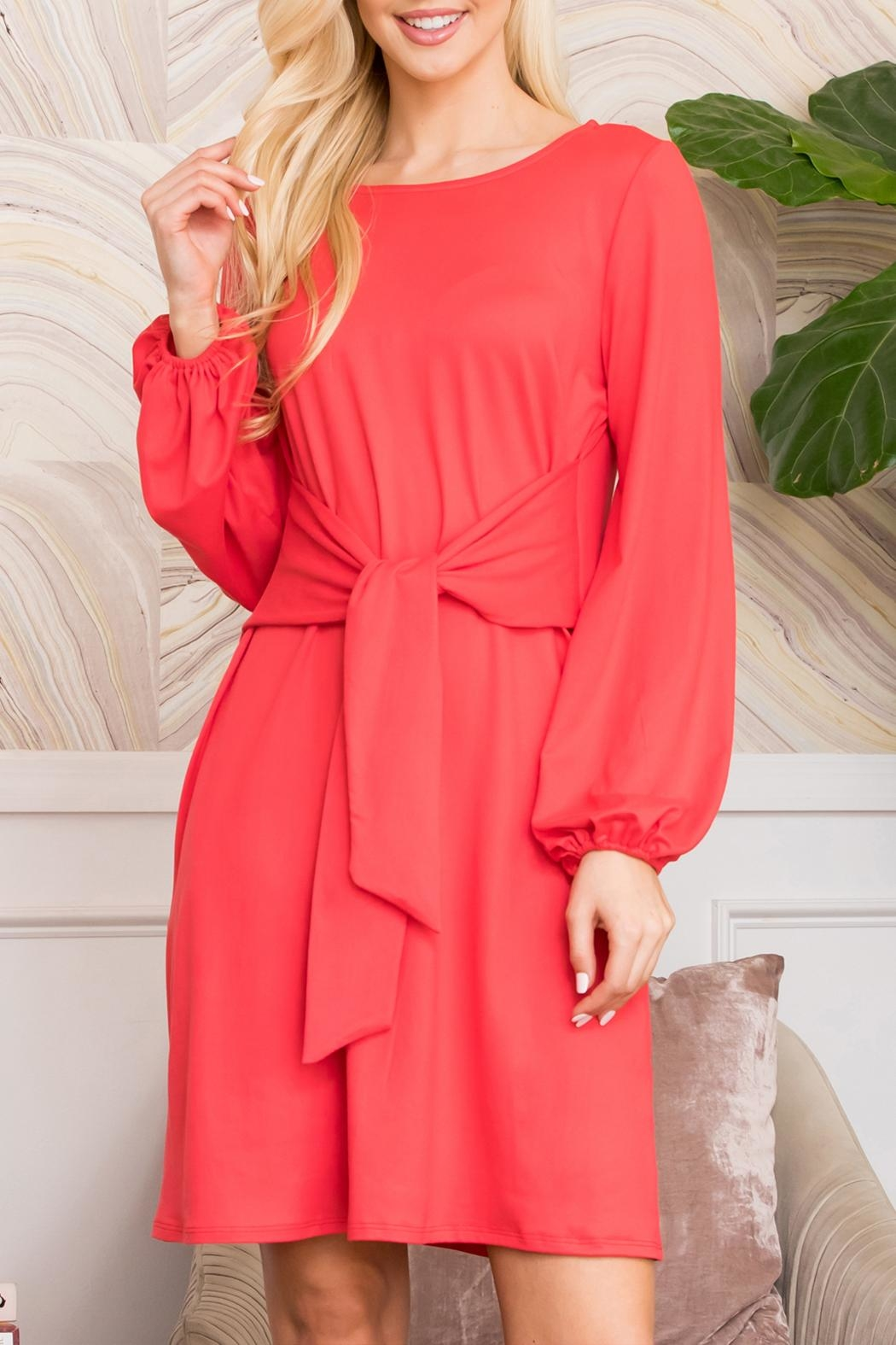 Riah Fashion Spring Puff Sleeve Tie Dress - Front Cropped Image