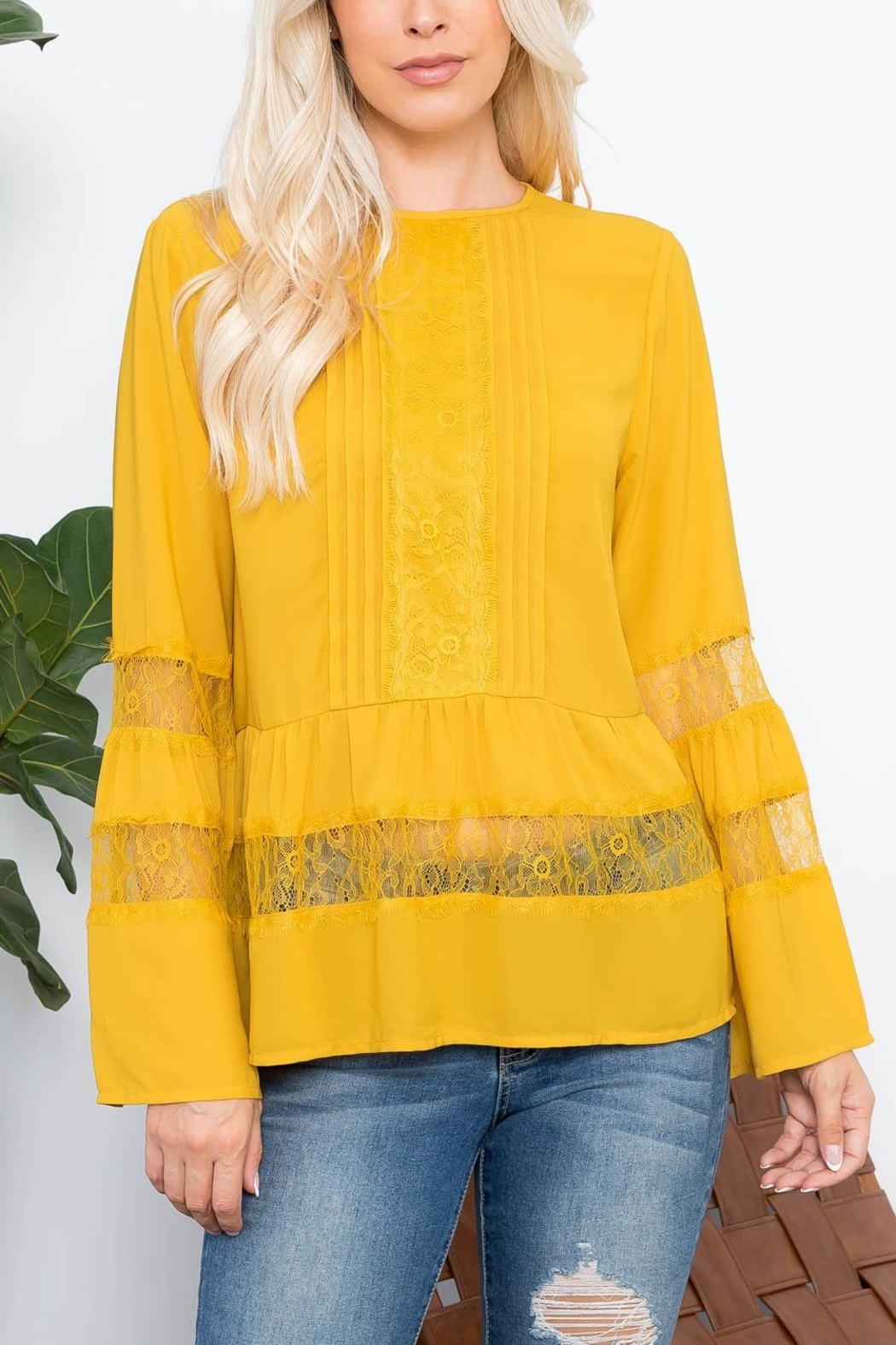 Riah Fashion Top - Front Cropped Image