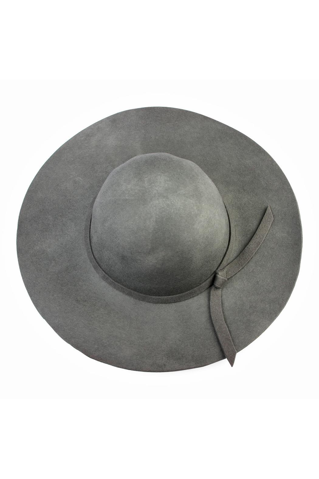 Riah Fashion Wool Floppy Hat - Front Cropped Image