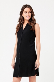 Ripe Maternity April Dress - Black - Product Mini Image
