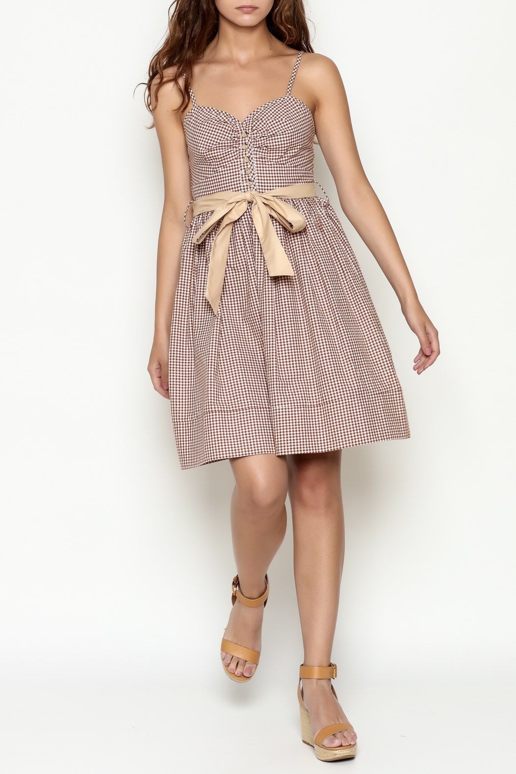 Roberta Oaks Gingham Print Dress - Side Cropped Image