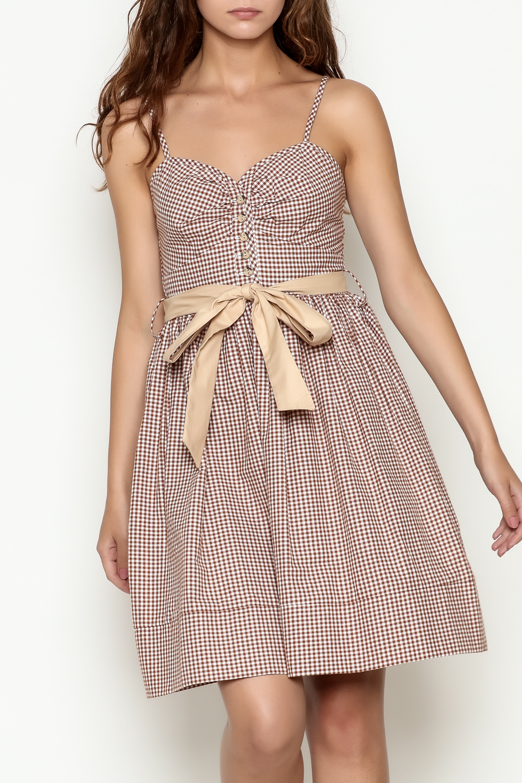 Roberta Oaks Gingham Print Dress - Front Cropped Image