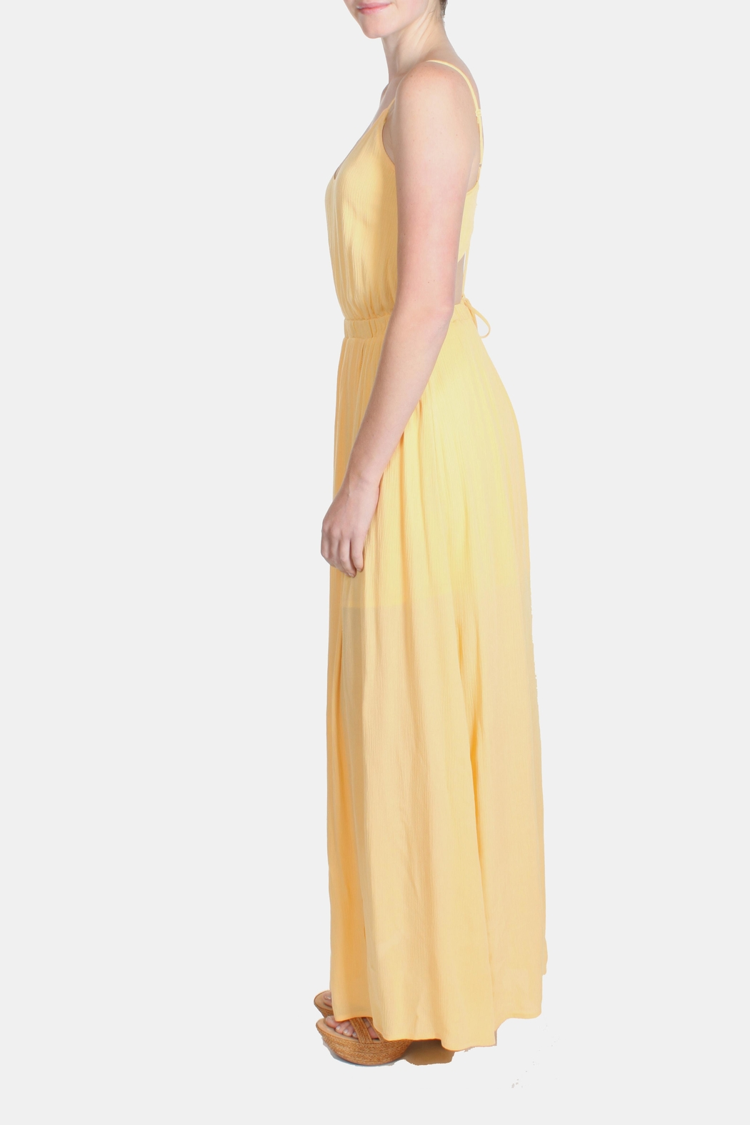 rokoko Yellow Corset Dress - Back Cropped Image