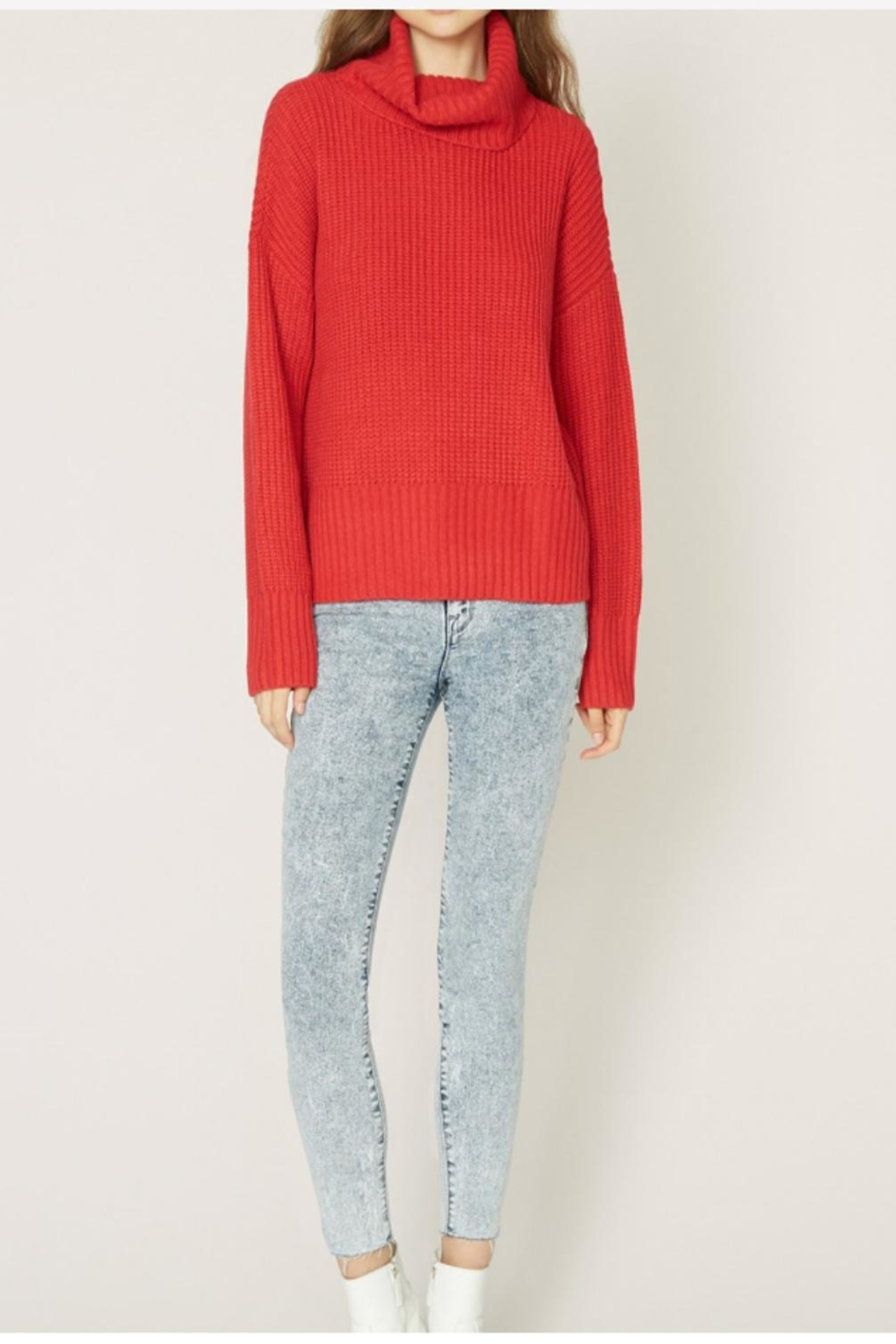 Sanctuary Roll Neck Sweater - Main Image