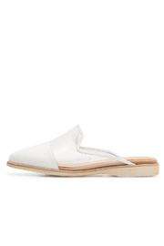 Rollie/Sidecut Clear Slides - Front cropped