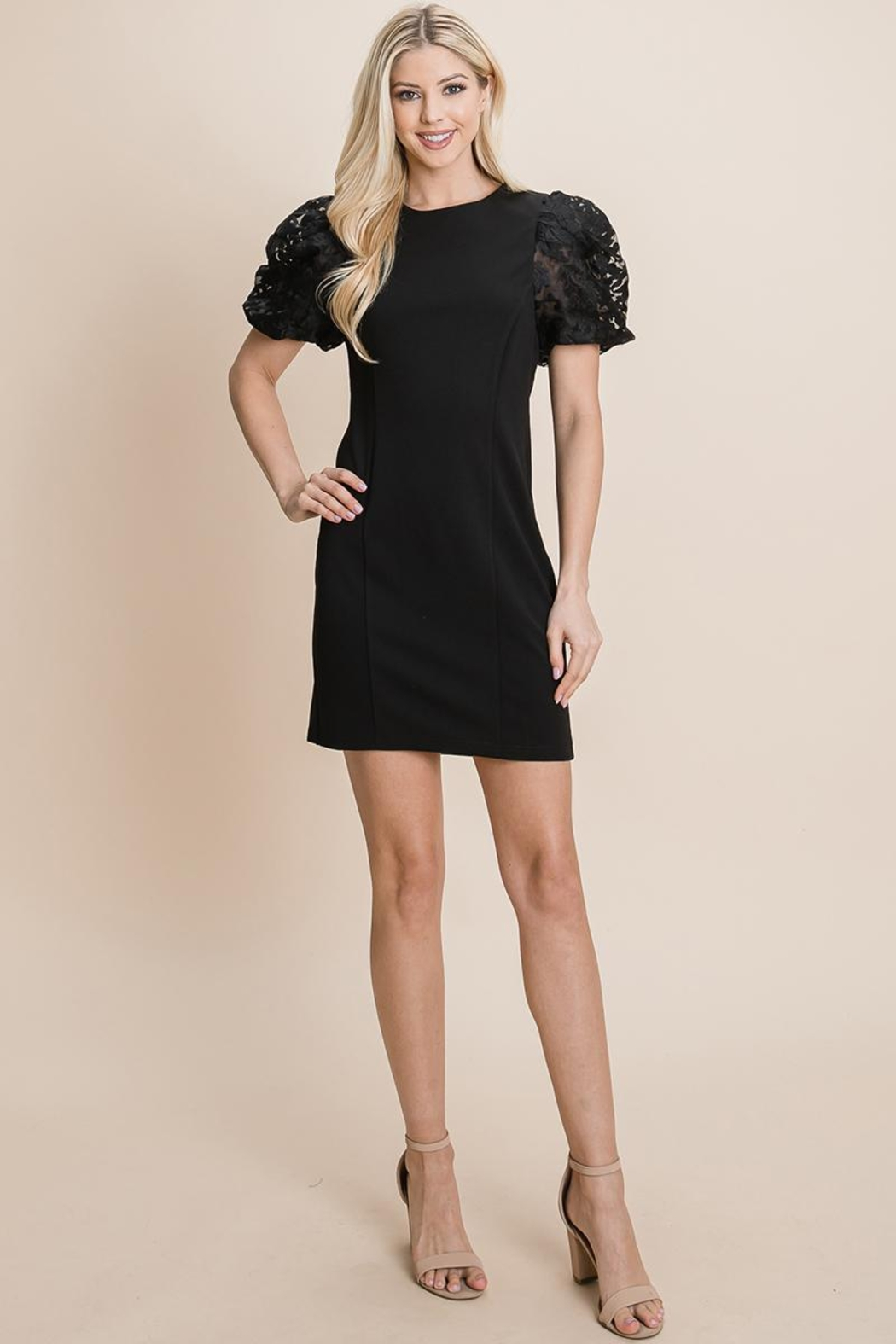 ROLYPOLY Apparel Puffed Contrast Flower Embroidered Sheath Dress - Main Image