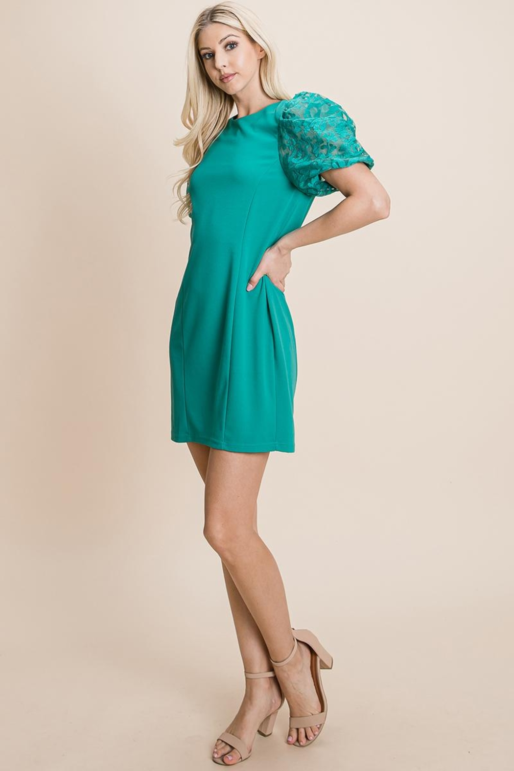 ROLYPOLY Apparel Puffed Contrast Flower Embroidered Sheath Dress - Front Full Image