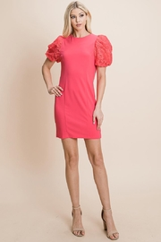 ROLYPOLY Apparel Puffed Contrast Flower Embroidered Sheath Dress - Back cropped