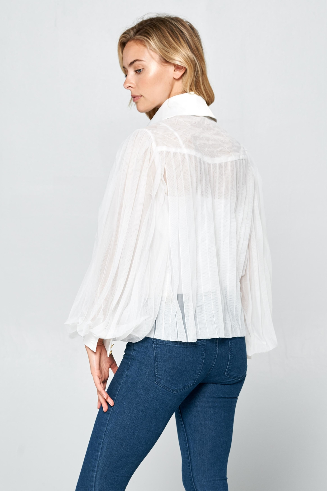 Racine Romantic Silhouette Blouse - Back Cropped Image