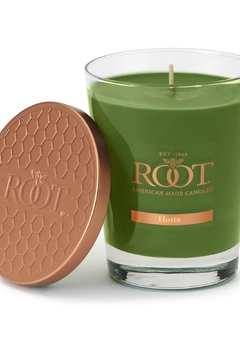 Root Candle Lg Hosta Candle - Alternate List Image