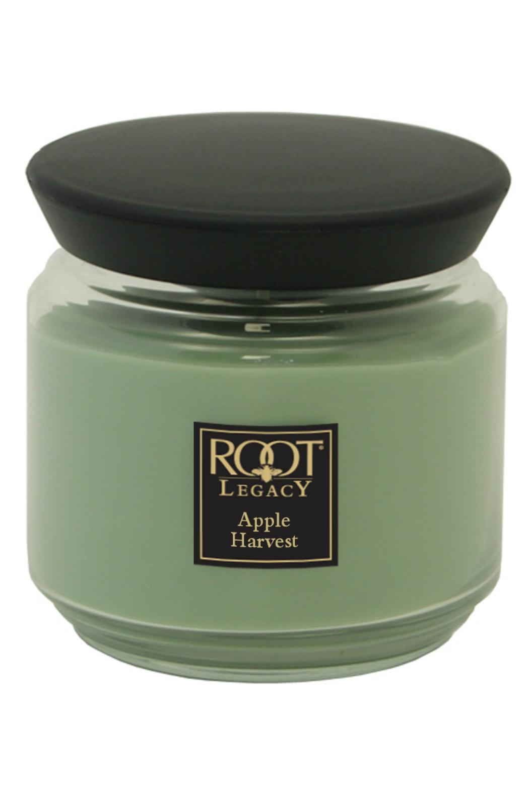 Root Candle Medium Apple-Harvest Candle - Main Image