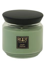 Root Candle Medium Apple-Harvest Candle - Product Mini Image