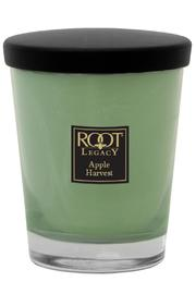 Root Candle Large Candle Apple-Harvest - Product Mini Image
