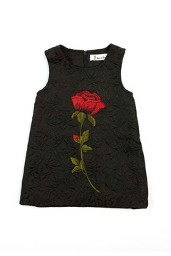 Shoptiques Product: Rose-Embroidered A-Line Dress