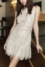 Saylor Rosemary Lace Dress - Product Mini Image